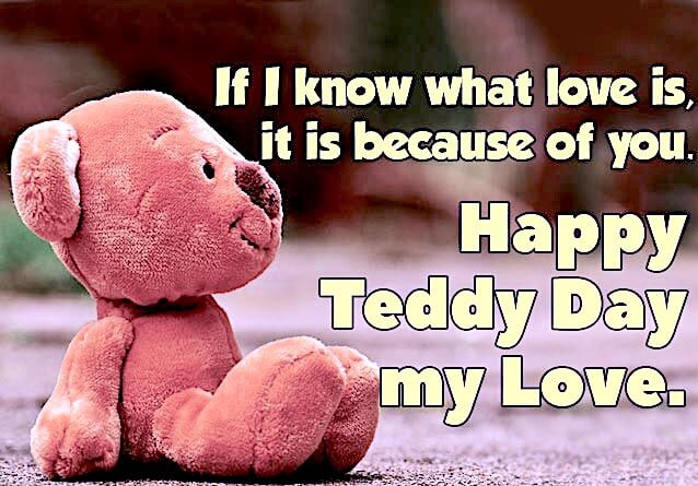 Teddy Day wishes message